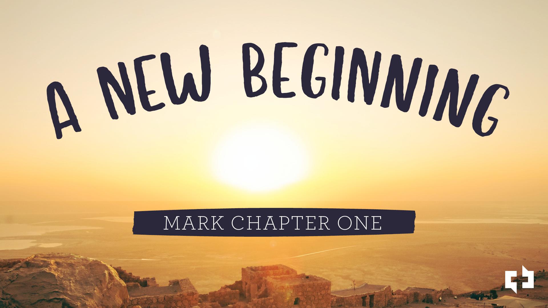 A New Beginning Website Image